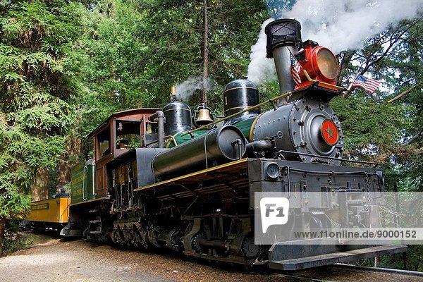 Roaring Camp Railroad  Felton  Santa Cruz County  California  USA