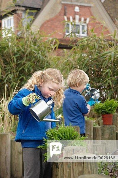 Schuljunge und -mädchen gießen Pflanzen im Garten