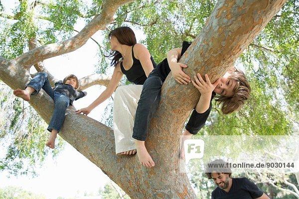 Familie mit zwei Jungen  die auf den Parkbaum klettern