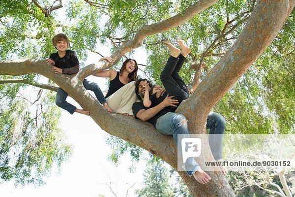 Porträt einer Familie mit zwei Jungen  die auf einen Parkbaum klettern.