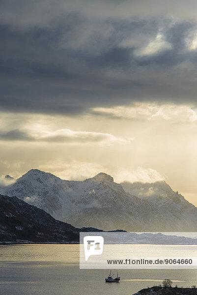 Fischerboot im Fjord  Austnesfjord  Vagan  Lofoten  Norwegen