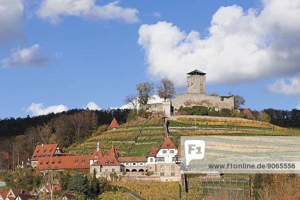 Burg Hohenbeilstein im Herbst  Beilstein  Baden-Württemberg  Deutschland