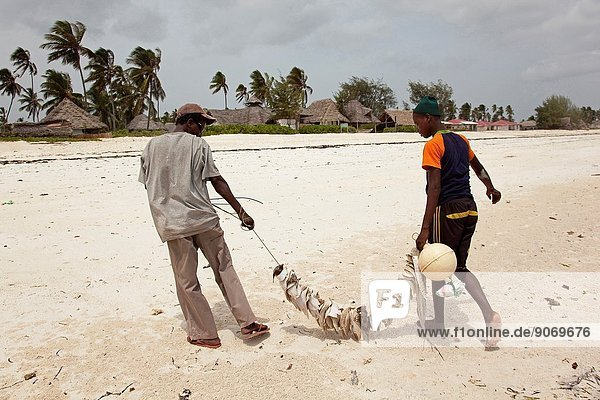 Fishermen turning back from the catch with different types of fish attached to the fishing line  Nungwi beach  Zanzibar Island  Tanzania  East Africa.