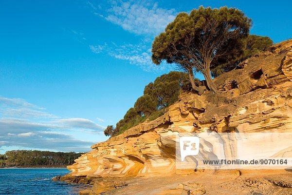 Painted Cliffs  Maria Island National Park  Tasmania  Australia.