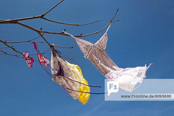 Asien  Thailand  Bangkok  Badebekleidung  die an Ästen hängt