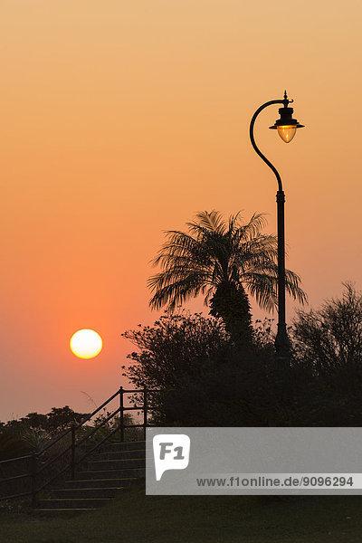 China  Hongkong  Silhouette einer Straßenlaterne bei Sonnenuntergang im Victoria Peak Garden und Palme