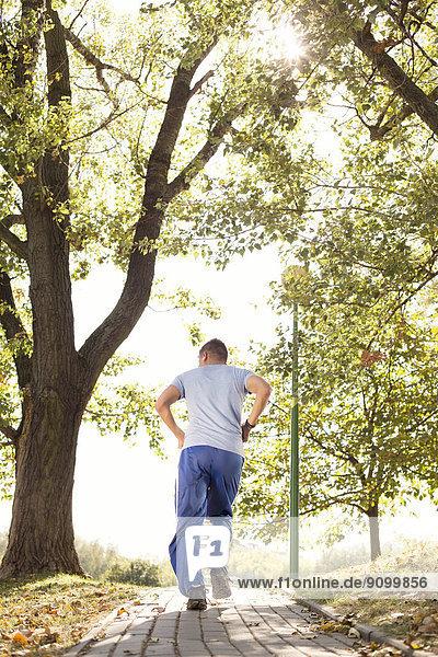 Mann  Rückansicht  joggen  Ansicht  Länge  voll