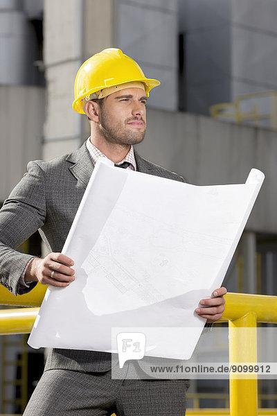 bauen  sehen  halten  Blaupause  Ingenieur  jung  wegsehen  Reise