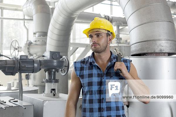 Industrie  arbeiten  halten  jung  Schraubenschlüssel