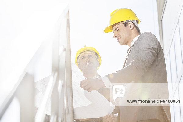niedrig  unterhalten  Geschäftsmann  Hut  Blaupause  Treppe  Ansicht  jung  Flachwinkelansicht  Winkel  hart