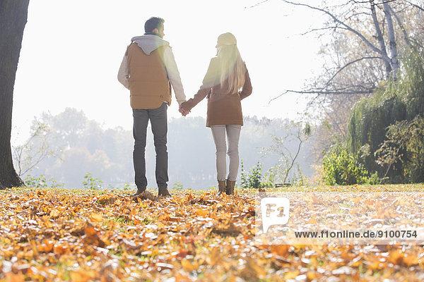 halten  Herbst  Rückansicht  Ansicht