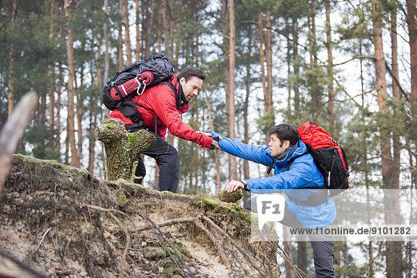 Hilfe  Wald  wandern  jung  Freund  trekking