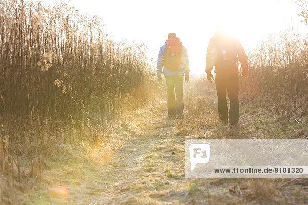 Zusammenhalt  gehen  Feld  wandern  Rückansicht  Ansicht  Länge  voll