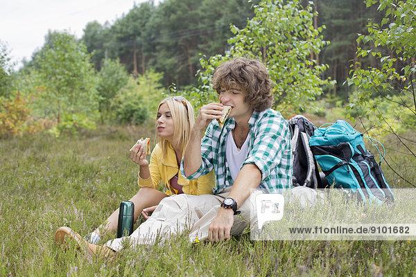 Entspannung  Feld  wandern  Sandwich  essen  essend  isst