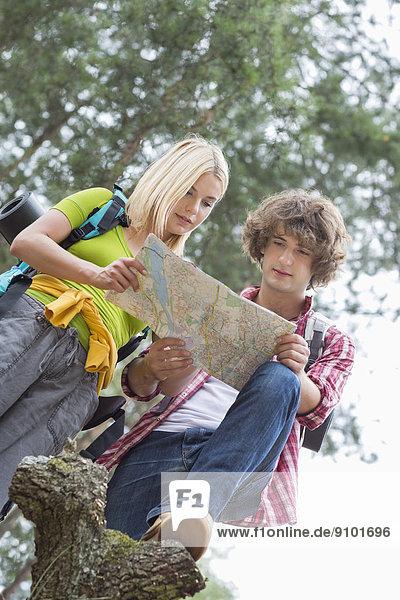 niedrig  Zusammenhalt  Wald  Landkarte  Karte  wandern  Ansicht  Flachwinkelansicht  Winkel  vorlesen