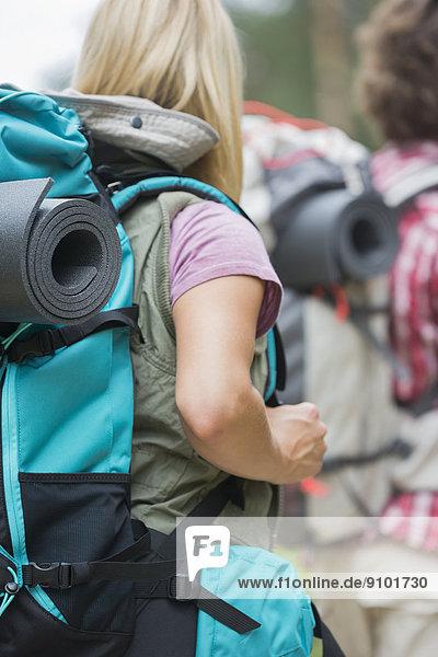 Rucksack  Außenaufnahme  Mann  tragen  Hintergrund  wandern  Rückansicht  Ansicht  freie Natur