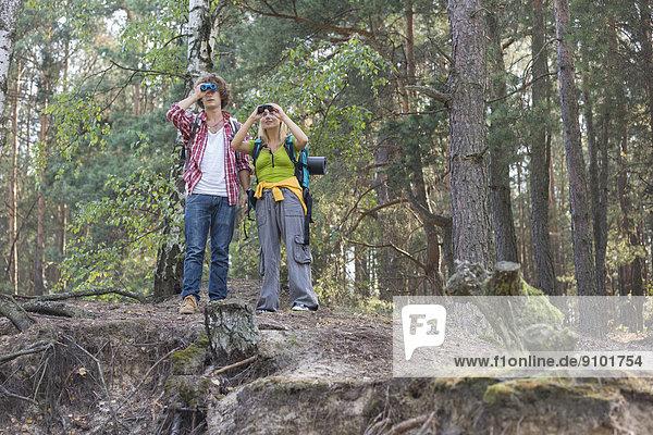 benutzen  Wald  wandern  Fernglas