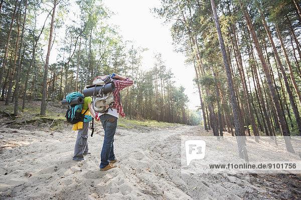gehen  halten  Wald  wandern  Rückansicht  Ansicht