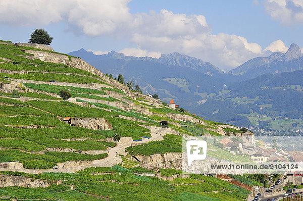 Genfer See Genfersee Lac Leman Schweiz Kanton Waadt