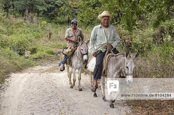 Bauern reiten auf Eseln  bei Jalcomulco  Veracruz  Mexiko Bauern reiten auf Eseln, bei Jalcomulco, Veracruz, Mexiko