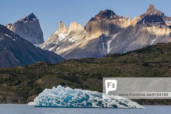 Eisberg am Lago Grey  Nationalpark Torres del Paine  Patagonien  Chile