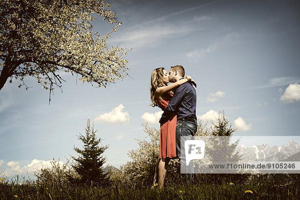 Liebespaar küsst sich neben einem blühenden Baum im Frühling  Tirol  Österreich Liebespaar küsst sich neben einem blühenden Baum im Frühling, Tirol, Österreich