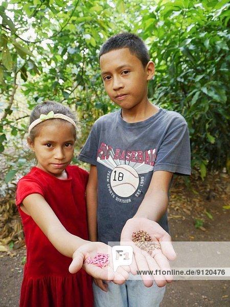 Planung Wohnhaus halten Garten Kohl Gurke Samen Nicaragua