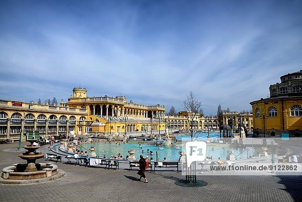 Budapest  Hauptstadt  Europa  Gesundheitspflege  Schädling  Ungarn