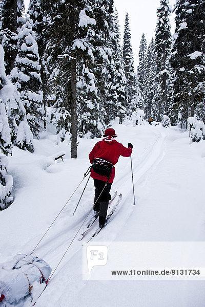 Skibergsteigen  British Columbia  Kanada