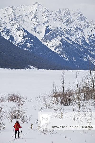 nahe  Frau  Spritzer  See  jung  Kananaskis Country  Schneeschuhlaufen