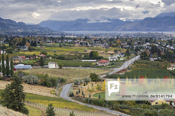 See Weinberg Penticton British Columbia Kanada