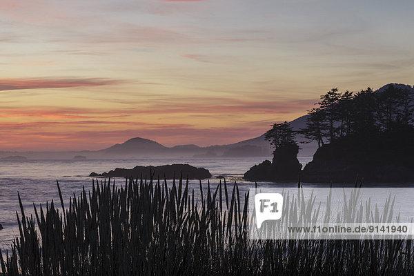 Insel  Ansicht  Ländliches Motiv  ländliche Motive  Clayoquot Sound  British Columbia  Kanada  Abenddämmerung  Flores  Walfänger