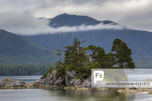 sitzend  klein  Insel  zeigen  britisch  Kanada  Westküste