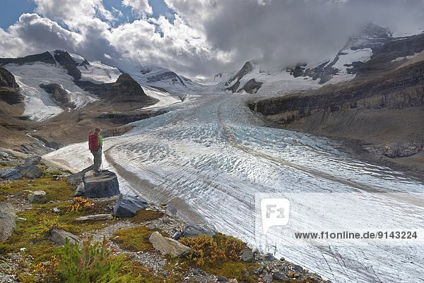 Mount Robson Provincial Park  British Columbia  Kanada