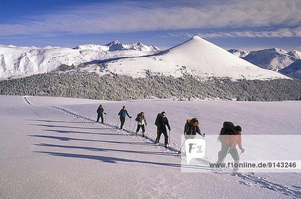 Berg  Hintergrund  Selkirk Mountains  britisch  Kanada