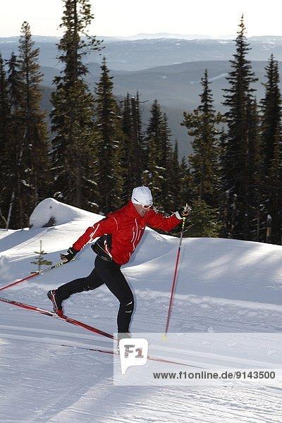 überqueren  See  Skisport  Norden  Klassisches Konzert  Klassik  Skiabfahrt  Abfahrt  British Columbia  Kanada  Kreuz