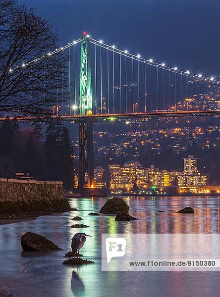 Brücke blau Eingang groß großes großer große großen Kanada Reiher Vancouver