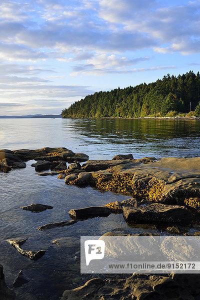 nahe  Hochformat  Felsen  Strand  Landschaft  Stadt  Insel  Gewölbe  typisch  British Columbia  Kanada  Vancouver