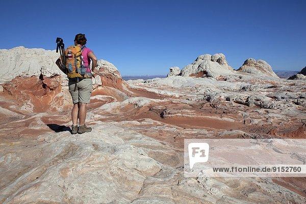 Vereinigte Staaten von Amerika  USA  Steilküste  Landschaftlich schön  landschaftlich reizvoll  Arizona  Schlucht