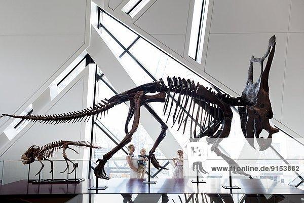 sehen  Junge - Person  klein  Museum  Monarchie  Mädchen  Mutter - Mensch  Kanada  Dinosaurier  Ontario  Toronto