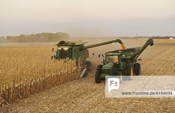 Getreide  gehen  leer  Mähdrescher  Kanada  Manitoba