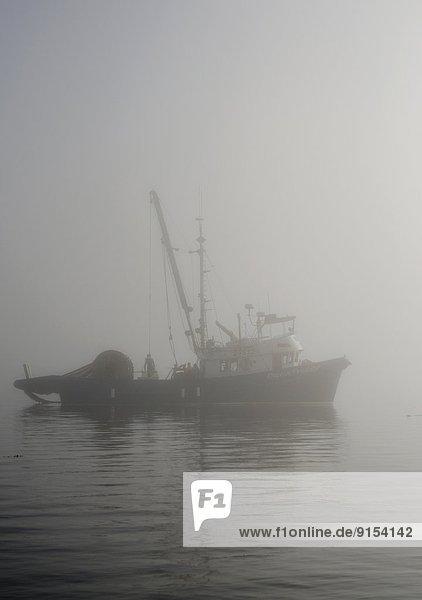 Johnstone Strait  British Columbia  Kanada  Fischerboot  Vancouver Island