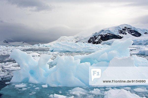 Paradise Bay  Antarctic Peninsula