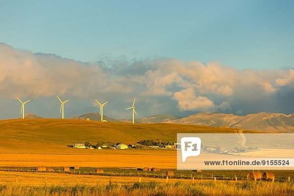 Windturbine Windrad Windräder Sonnenaufgang Bauernhof Hof Höfe Pincher Creek Alberta Alberta Kanada
