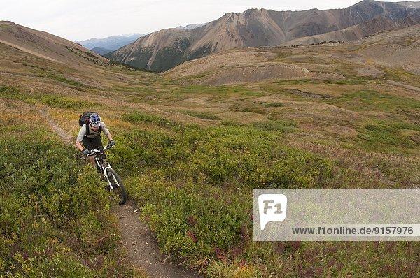 Berg  Schutz  Tagesausflug  See  Zimmer  Fichte  British Columbia  Kanada
