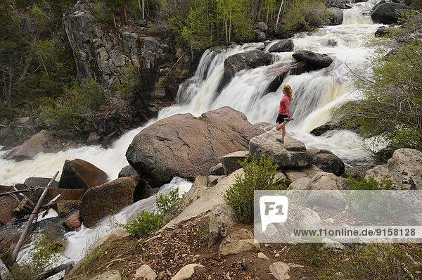 Spülbecken  Vereinigte Staaten von Amerika  USA  Frau  folgen  rennen  Mittelpunkt  Schlucht  Wyoming