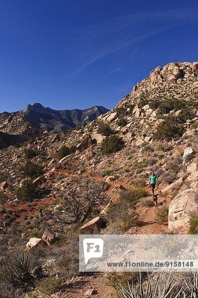 Felsbrocken  Frau  folgen  rennen  Nevada  rot  Schlucht  Las Vegas