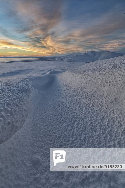 Krähe  Farbaufnahme  Farbe  Berg  bedecken  Wolke  Sonnenuntergang  über  Schnee  Tundra  Yukon