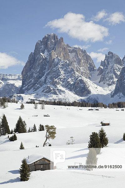 Winterlandschaft  Holzhütte vorn  hinten Gipfel des Langkofel  Seiser Alm  Dolomiten  Südtirol  Alto Adige  Italien