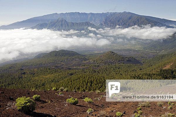 Volcanic crater in the Caldera de Taburiente National Park  La Palma  Canary Islands  Spain